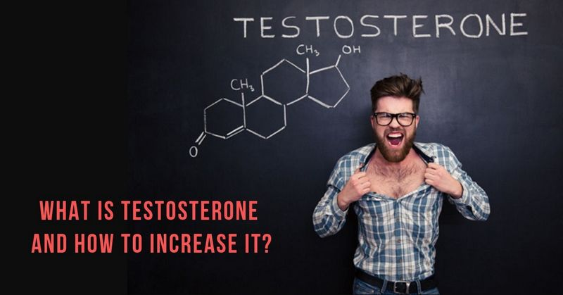 What is Testosterone and How to Increase It